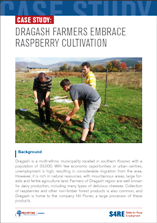 Case_Study_-_Dragash_farmers_embrace_raspberry_cultivation