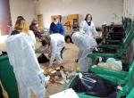 Waste Assessment - Viti-Vitina - Feb 2011 - 2