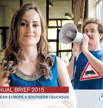 Annual Brief 2015